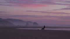 sharing the sunset @ Cannon Beach, OR (gks18) Tags: ocean sunset people dog beach oregon canon twilight soft dusk cannonbeach companion