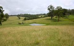 347 Wirrimbi Road, Wirrimbi NSW
