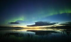 Karelian treasures ll (Mike Reva) Tags: longexposure autumn sky stars landscape star russia ngc astro astrophotography aurora astronomy karelia auroraborealis borealis astrophoto starrynight stargazing astrometrydotnet:status=failed astrometrydotnet:id=nova1289424
