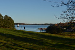Suomenlinna / Sveaborg.. (Sanja Byelkin) Tags: tree finland watercraft seaocean oleksandrbyelkin visittohelsinkitallinn2015