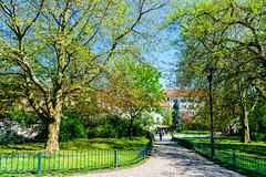 _DSC4352 (Abiola_Lapite) Tags: park travel spring prague prag praha czechrepublic frhling d800  2015  tschechischenrepublik 2470mmf28g