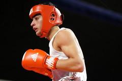 DSC05179 (Mustafa Harmanci) Tags: youth denmark fight young martialarts battle boxing combat danmark champions champ ringside boksning kampsport
