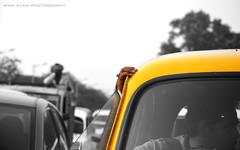 Cabby (Ayan.Photography) Tags: street yellow hand candid taxi yellowcab driver cabbie taxidriver ambassador kolkata bnw cabby selectivecolor yellowtaxi
