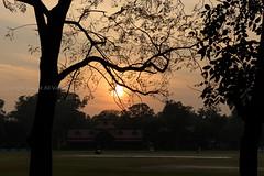 0W6A2817 (Liaqat Ali Vance) Tags: trees pakistan sunset nature garden photography lawrence google silhouettes ali punjab lahore vance liaqat