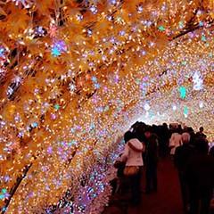 #Ginza #Japan #lights #Christmas #happy #shopping #malls #presents #hopes #illumination #flashing #instajapan #visitjapan (Cevex Madrid) Tags: christmas japan shopping happy lights ginza illumination malls presents hopes flashing visitjapan instajapan
