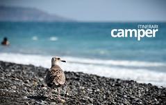 Basilicata (Itinerari Camper) Tags: viaggi camper travel itinerari italia italy basilicata mare sea summer