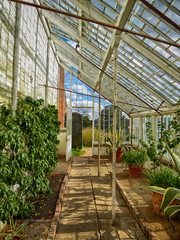 04x2016 Calke 26 (garethedwards36) Tags: glasshouse windows glazing greenhouse building architecture calke abbey hdr park gardens derbyshire midlands uk lumix