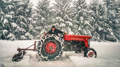 Old Massey at Work (1 of 1) (amndcook) Tags: farm outdoors masseyferguson nature plowing snow tractor winter