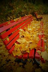 Herbst (Chris Grabert) Tags: berlin steglitz herbst bank laub bltter ooc fuji xt10 fujinonxf1855mm