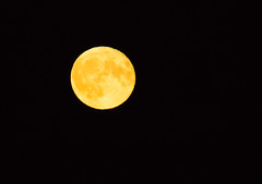 Hunter's Moon (Claire Stones) Tags: nikon october fullmoon scotland huntersmoon firthofforth forth