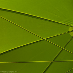Green composition (wuwei2012) Tags: 20160604dsf3553 sasegerpyke green parasol fabric minimalistic abstract square lines abstraction minimalism