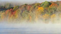 Foggy fall morning by bioprof52 -