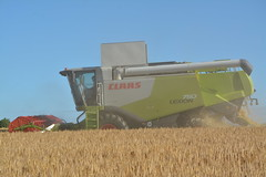 Claas Lexion 750 Combine Harvester cutting Winter Barley (Shane Casey CK25) Tags: claas lexion 750 combine harvester cutting winter barley wb glanworth grain harvest grain2016 grain16 harvest2016 harvest16 corn2016 corn crop tillage crops cereal cereals golden straw dust chaff county cork ireland irish farm farmer farming agri agriculture contractor field ground soil earth work working horse power horsepower hp pull pulling cut knife blade blades machine machinery collect collecting mähdrescher cosechadora moissonneusebatteuse kombajny zbożowe kombajn maaidorser mietitrebbia nikon d7100