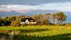 (Femme Peintre) Tags: landschaft reetdachhaus sonne bäume himmel natur outdoor
