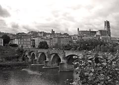 Albi - le Pont-Vieux sur le Tarn (Maxofmars) Tags: europe europa france francia frankreich frankrijk ville city ciudad citta stadt fleuve river río fiume fluss bw unesco tarn