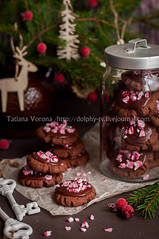 Chocolate Christmas Cookies with Crushed Candy Cane (dolphy_tv) Tags: background baking biscuit branch brown candy candycane chocolate christmas christmasbaking cocoa cookie december decorated decoration dessert festive fir food frosting ganache gift glass glaze holiday homemade icing jar mint newyear paper pastry pink red reindeer round rustic seasonal sprinkled stack sweet table tasty traditional treat tree vintage winter wooden xmas