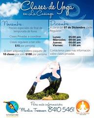 #yoga in the #rainforest of #costarica LaCusinga.com - #yogalove #yogaeverydamnday #yogaclass