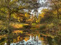 Wakehurst Place (niloc's pic's) Tags: wakehurstplace nationaltrust kewgardens ardingly sussex trees pond lake bridge reflections autumn autumncolour panasonic lumix