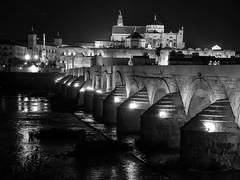 Puente Romano y Mezquita, Crdoba, Andaluca, Spain (Angel Talansky) Tags: guadalquivir cordoba andalucia spain turismo mezquita catedral rio puente puenteromano nocturna catedraldecordoba mezquitadecordoba bridge rioguadalquivir river 1000