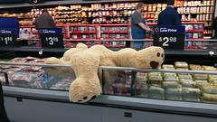 Black Friday 2016 (Adventurer Dustin Holmes) Tags: 2016 walmart blackfriday stuffedanimal stuffedbear teddybear passedout knockedout ted jimmydean
