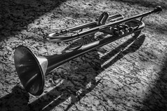 Trumpet Shadows (tim.perdue) Tags: trumpet shadows black white bw monochrome horn brass musical instrument brushed light shadow contrast granite countertop pattern monovember 2016 monovember2016 zeus guarnerius ztr900 kanstul bb bell valves leadpipe mouthpiece lacquer slide