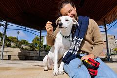 buddies (Gail at Large | Image Legacy) Tags: portugal paulo viseu 2015 gailatlargecom peneladabeira maridopaulo icethedog