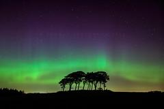Explosions in the sky. (Stuart Stevenson) Tags: uk night landscape scotland astro galaxy aurora astronomy solarwind northernlights auroraborealis gbr lanark clydevalley southlanarkshire stuartstevenson appicoftheweek