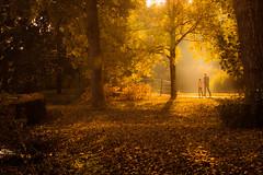 strollin' (bjdewagenaar) Tags: park autumn trees people orange sun holland nature colors dutch yellow warm raw minolta outdoor sony sunny alpha leafs lightroom gorinchem a58 gorcum 35105mm