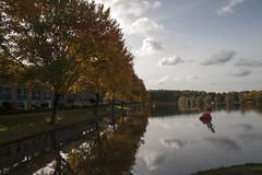 Floriade_251015_36 (Bellcaunion) Tags: park autumn fall nature zoetermeer rokkeveen florapark