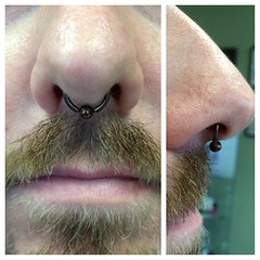 Septum Piercing by Taylor Bell