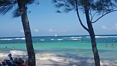 Sailboat at Red Stripe Beach Jamaica (Bella Lisa) Tags: sea seaweed beach beer sailboat swimming jamaica falmouth rasta bobmarley lifeguards caribbeansea redstripebeer falmouthjamaica redstripebeach