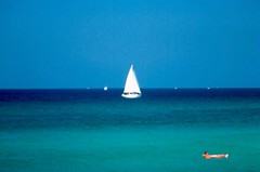 Sailboat / P1983-0611a076-s26 (Tim and Renda) Tags: gulfofmexico sailboats vacations bodiesofwater gulfcoast stateofflorida panamacitybeachflorida baycountyflorida vacation1983 floridacountybay formatfilm35mmslides year1983pictures canonae1program2067283 cameracanonae1program boatsshipsvesselsandwatercrafts beachvacation1983 floridacitypanamacitybeach rolla076