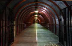 Walk The Line (Michelle O'Connell Photography) Tags: scotland glasgow line cyclepath finnieston glasgowsecc seccwalkway finniestonglasgow wunnel michelleoconnellphotography glasgowaynight