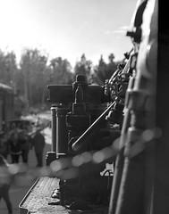 SteampunkTMaxRZ672015-12-19-0008 (handfetisch) Tags: tmax100 kodaktmax100 mamiyarz67proii 100tx mamiyasekorz110mmf28 photoexif