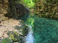cenote   cancun   mexico.