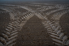 Morgennebel-89.jpg (CPbild) Tags: cpbild christoph pluennecke spuren tracks trecker traktor schlepper tractor natur acker field