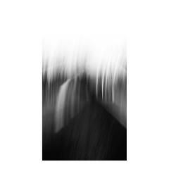 p s i c o r e c t a (creonte05) Tags: eduardomiranda nikon d7100 blackandwhite blancoynegro bconegro bw explore flickr 2485mmf284d 2016 chile art arte