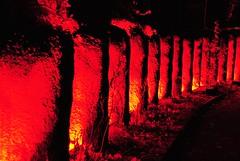 Lights in Alingss 2 (Bettysbilder) Tags: night lightsetting ljussttning ljusdesign kvllsfoto lights nightphotos