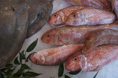 fish in open air market, Paris (tcd123usa) Tags: leicadlux4 redfish openairmarket paris parisianmarket