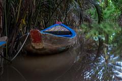 Lost in Mekong river (bienve958) Tags: mekong mytho vietnam ankhánh bếntre vn southeastasia mekongriver river water mythoriver boat landscape paisaje lost saariysqualitypictures