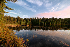 Lac Alphonse - La Mauricie National Park ( Qubec, Canada) (Andrea Moscato) Tags: andreamoscato canada america lago lake water acqua reflection riflesso trees wood pine clouds nuvole blue sky cielo green sunset tramonto evening nature natura natural naturale national np nationalpark paesaggio parco park view vivid freshwater
