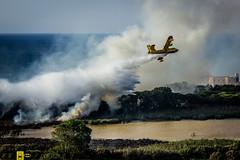 Incendio platamona (8) (Autolavaggiobatman) Tags: pineta elicottero stagno fiamme fumo mare sardegna canadair incendio platamona