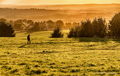 Going Home (robinta) Tags: outdoor landscape field hedgerow clouds sky human walker sunset vcolour vibrant evening pentax cleadonhills sigma18200mmhsmc ks1 cleadon grass warm detail texture contrast serene tranquil peaceful haze