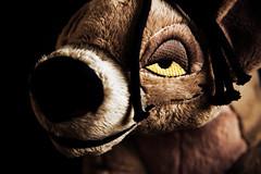006-Shenzi's Dramatic Lighting (Univaded Fox) Tags: shenzi hyena the lion king plush disney store photography experiment filters photoshop univaded