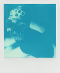 Blue Skull (LeandroF) Tags: polaroidsx70sonaronestep sx70 cyanograph600 cyanograph cyan blue vintage analogue impossibleproject instant instantfilm polaroidweek2016 polaroidweek fall autumn skull shadow