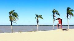Com o vento levou! (deisegomes1) Tags: brazil brasil costadoce praia beach rs laguna lago lagoa