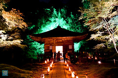 Tohoku 2016 - 509 (西文 Simon) Tags: 日本東北 miyagigun miyagiken 日本