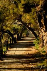 Passeggiata Ventimiglia (Raffaella_Girod_filla) Tags: raffaellagirod paesaggio natura fotografia fujifilm mare italia