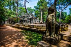 Stone Beast (Arbron) Tags: cambodia taprohm asia2015 rajavihara siemreap temple   krongsiemreap kh