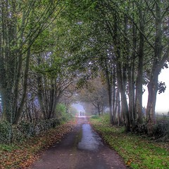 Autumn walk.. (bluebell girl) Tags: vanishingpoint landscape leaves trees england canong12 autumn countryside somerset priddy